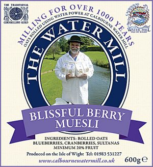 MUESLI blissful berry 600g